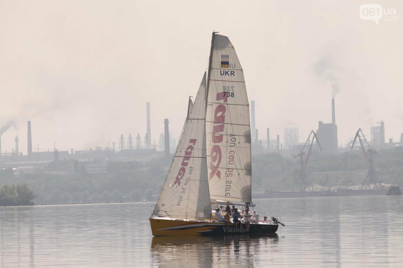 Сотни спортсменов и десятки яхт: как в Запорожье проходит парусная регата, – ФОТОРЕПОРТАЖ, фото-2