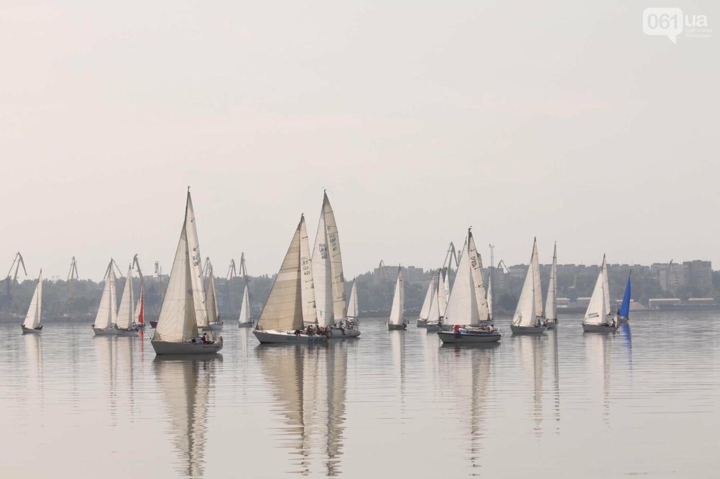 Сотни спортсменов и десятки яхт: как в Запорожье проходит парусная регата, – ФОТОРЕПОРТАЖ, фото-3
