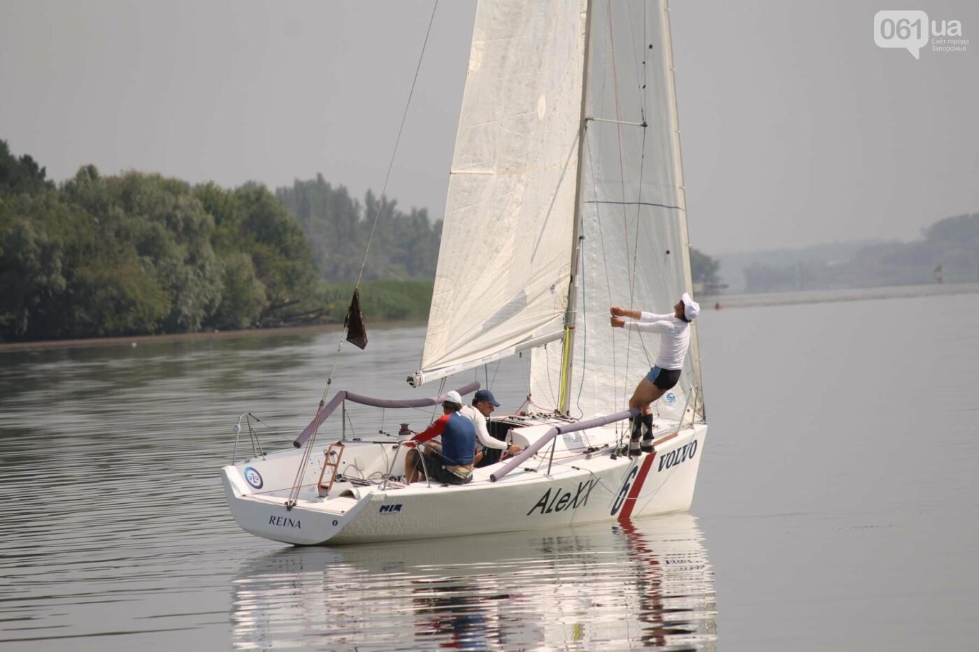 Сотни спортсменов и десятки яхт: как в Запорожье проходит парусная регата, – ФОТОРЕПОРТАЖ, фото-7