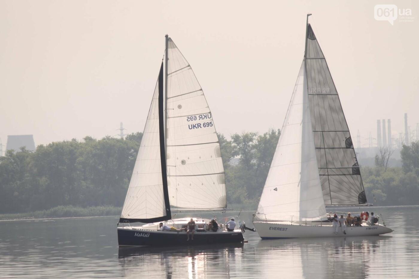 Сотни спортсменов и десятки яхт: как в Запорожье проходит парусная регата, – ФОТОРЕПОРТАЖ, фото-4