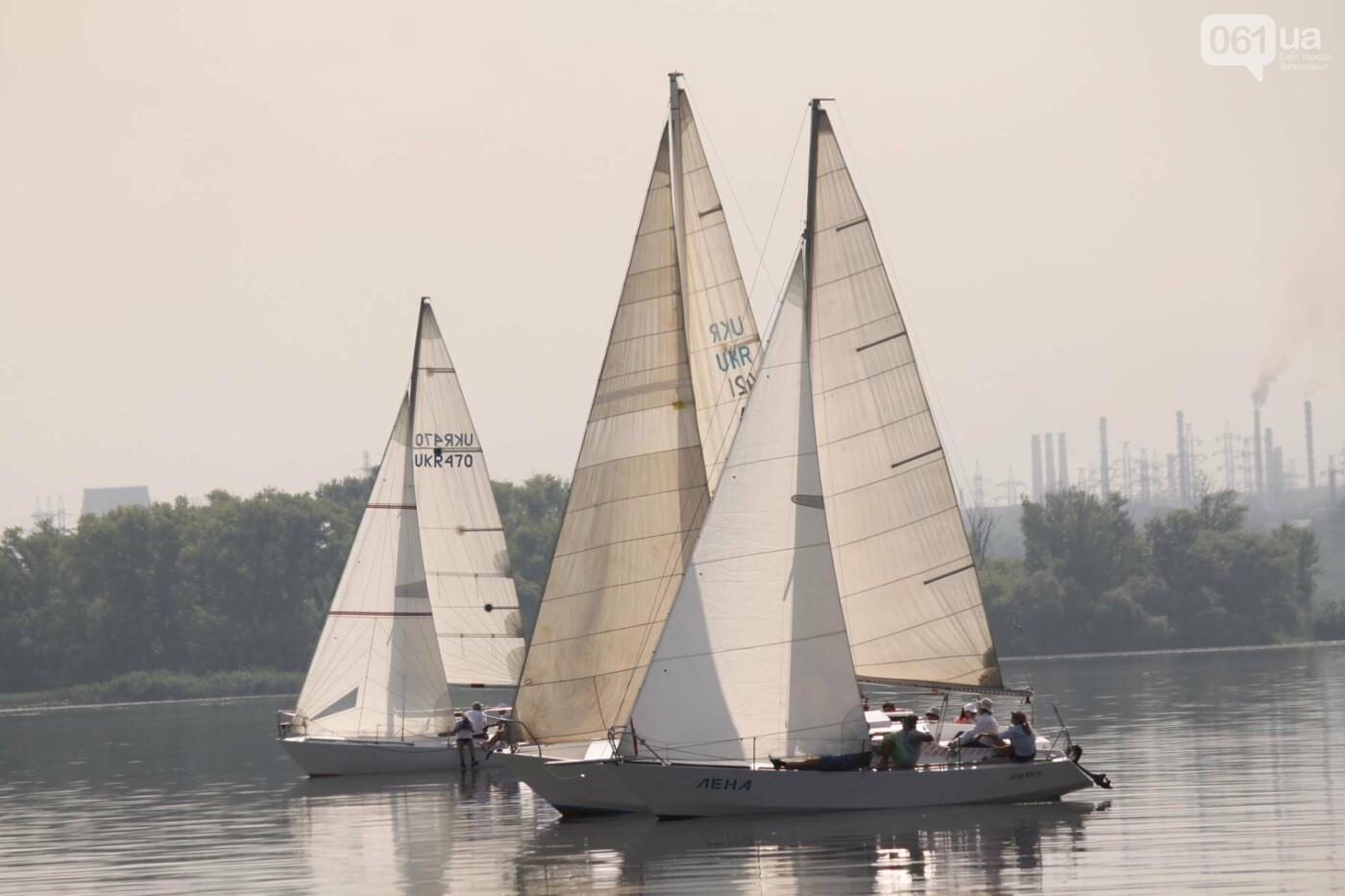 Сотни спортсменов и десятки яхт: как в Запорожье проходит парусная регата, – ФОТОРЕПОРТАЖ, фото-6