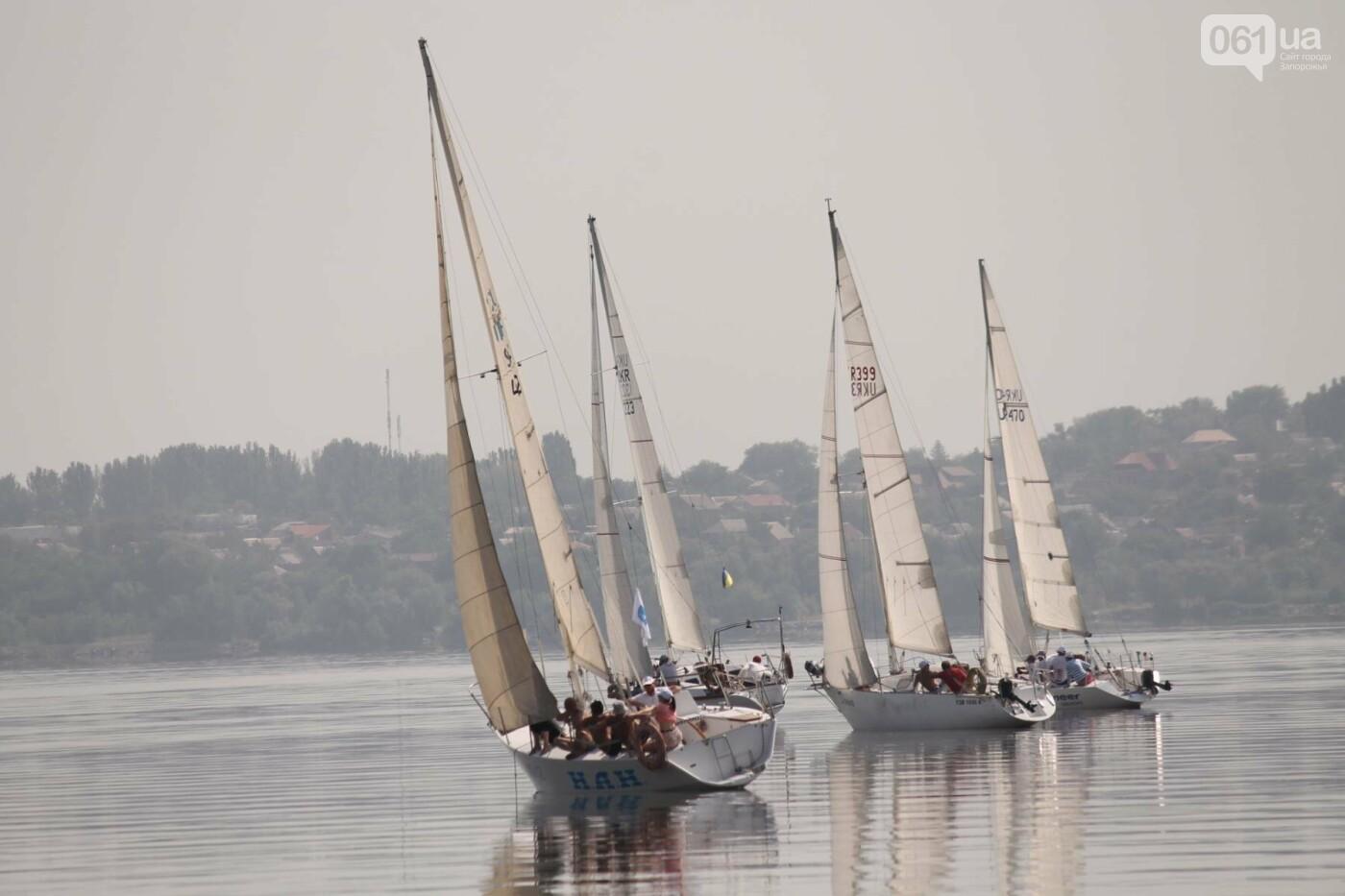 Сотни спортсменов и десятки яхт: как в Запорожье проходит парусная регата, – ФОТОРЕПОРТАЖ, фото-9