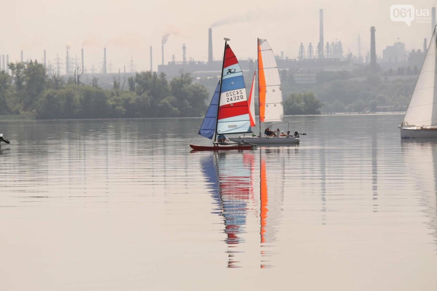 Сотни спортсменов и десятки яхт: как в Запорожье проходит парусная регата, – ФОТОРЕПОРТАЖ, фото-13