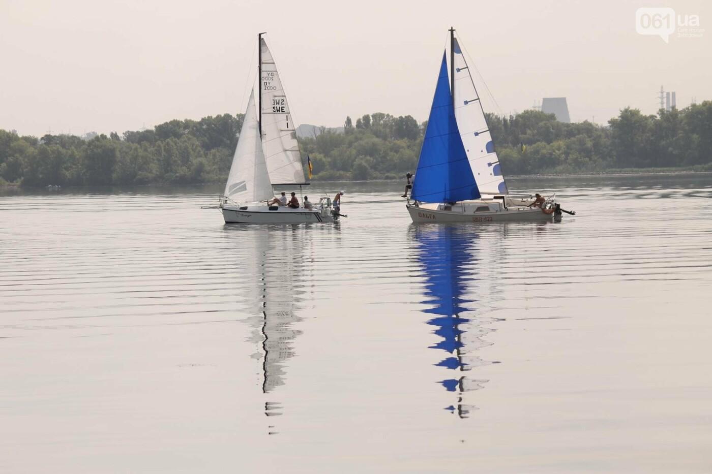 Сотни спортсменов и десятки яхт: как в Запорожье проходит парусная регата, – ФОТОРЕПОРТАЖ, фото-14