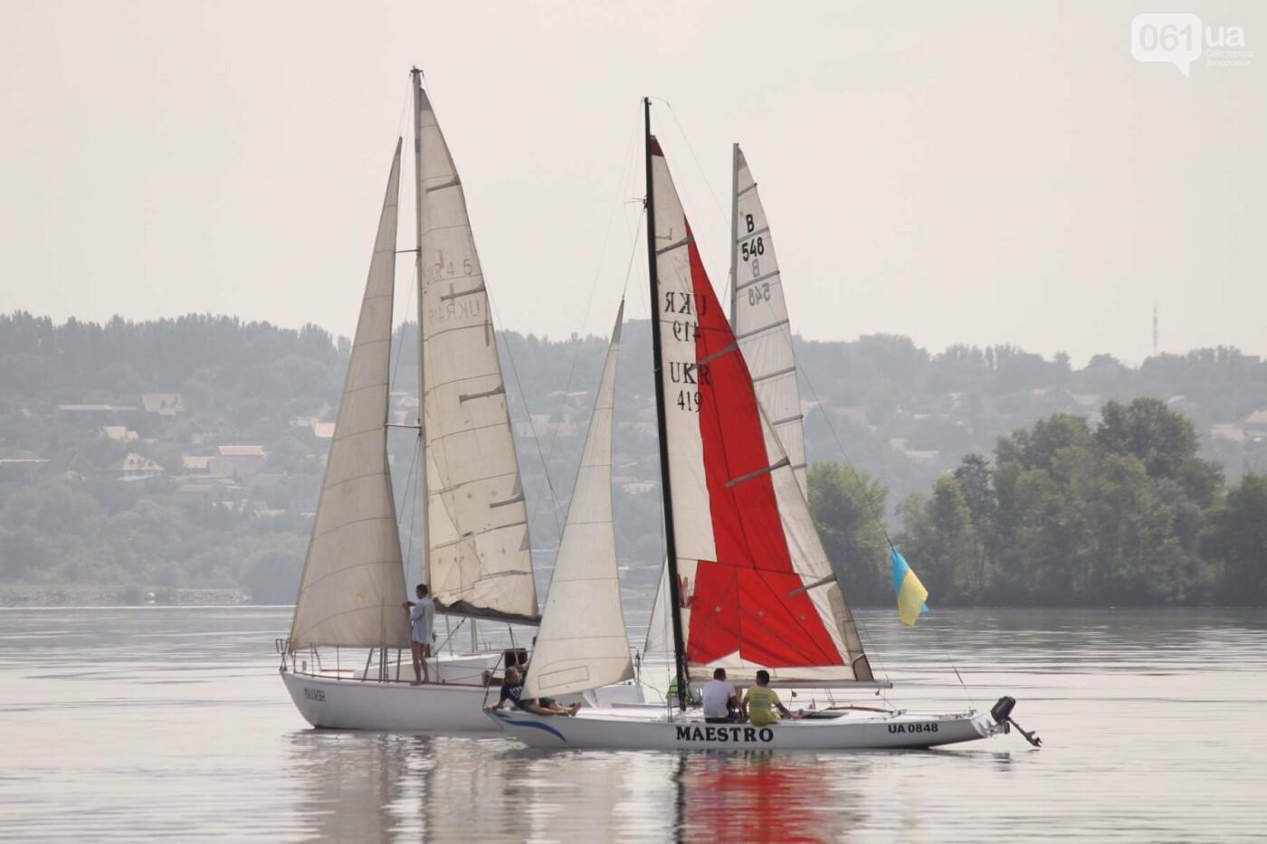 Сотни спортсменов и десятки яхт: как в Запорожье проходит парусная регата, – ФОТОРЕПОРТАЖ, фото-8