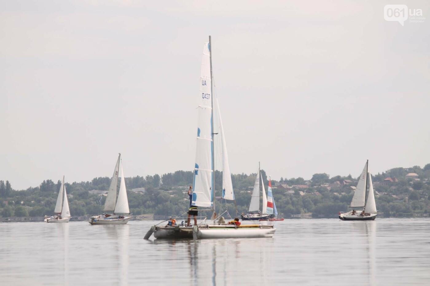 Сотни спортсменов и десятки яхт: как в Запорожье проходит парусная регата, – ФОТОРЕПОРТАЖ, фото-16