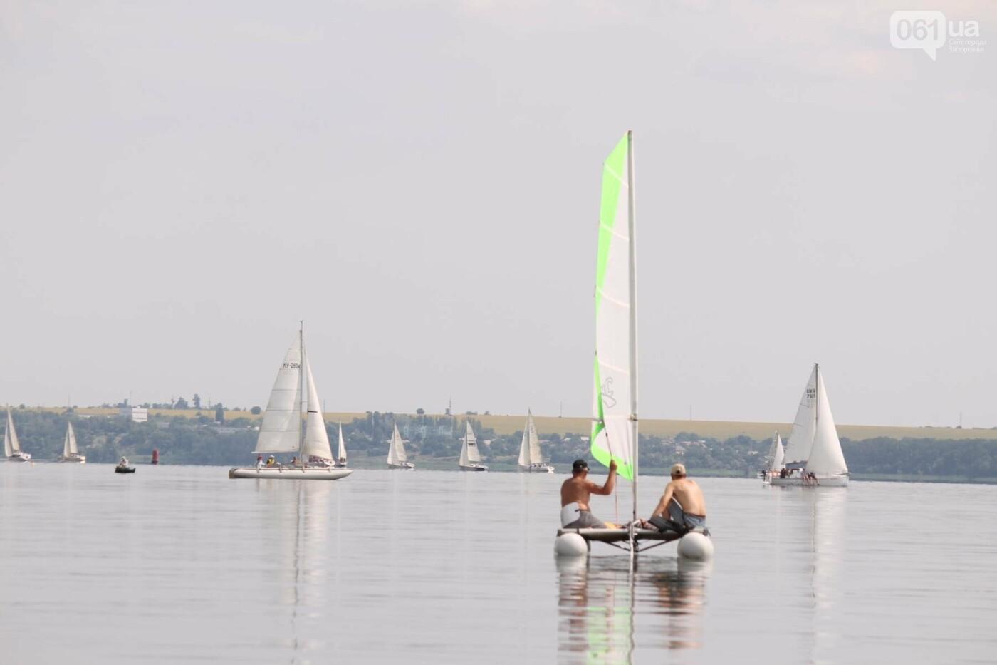 Сотни спортсменов и десятки яхт: как в Запорожье проходит парусная регата, – ФОТОРЕПОРТАЖ, фото-11