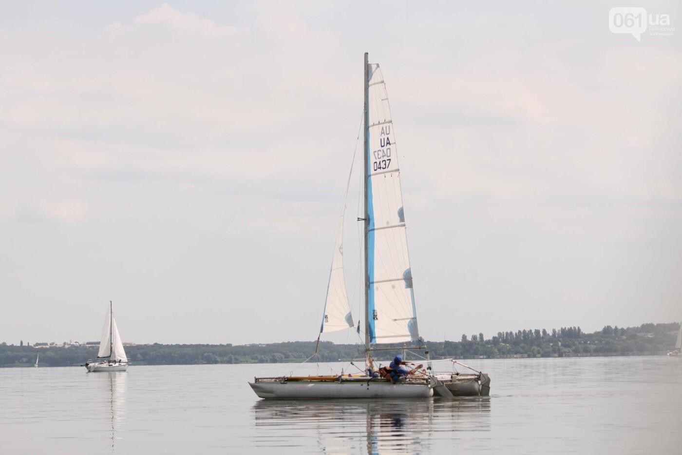 Сотни спортсменов и десятки яхт: как в Запорожье проходит парусная регата, – ФОТОРЕПОРТАЖ, фото-15