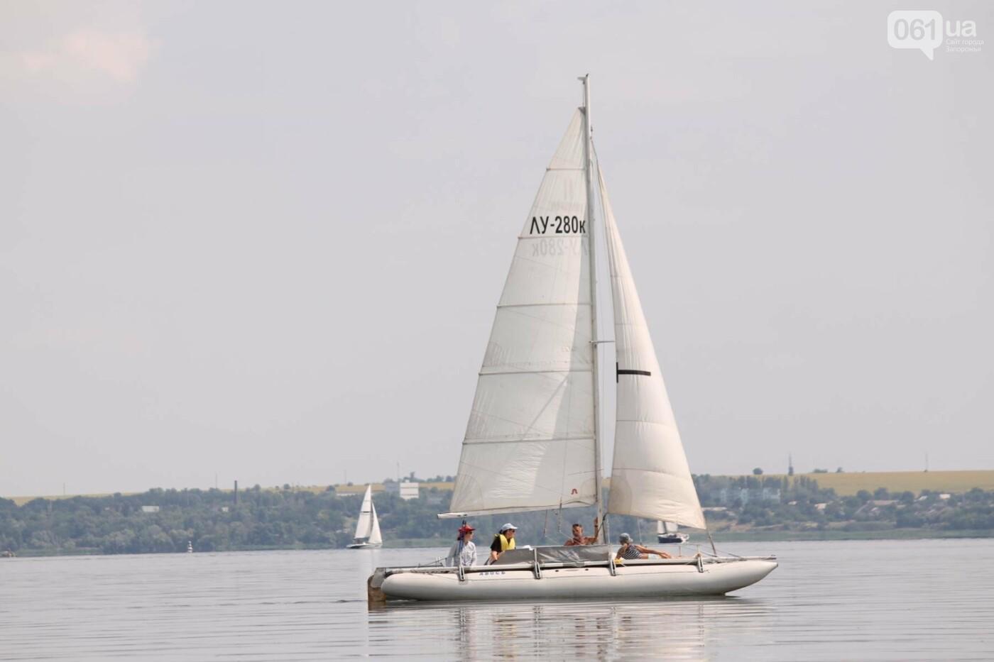 Сотни спортсменов и десятки яхт: как в Запорожье проходит парусная регата, – ФОТОРЕПОРТАЖ, фото-32