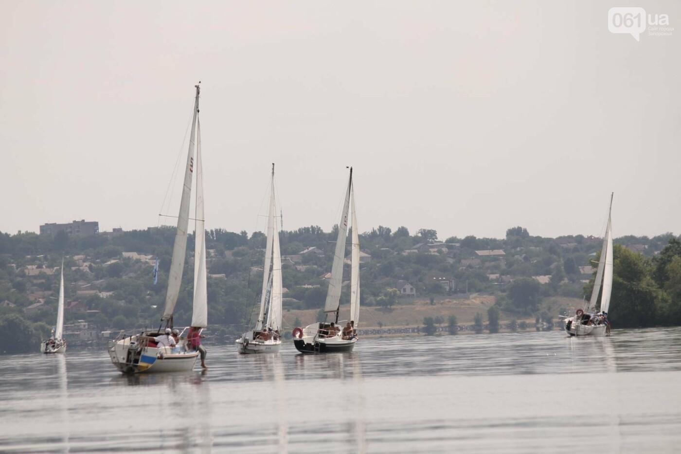 Сотни спортсменов и десятки яхт: как в Запорожье проходит парусная регата, – ФОТОРЕПОРТАЖ, фото-30