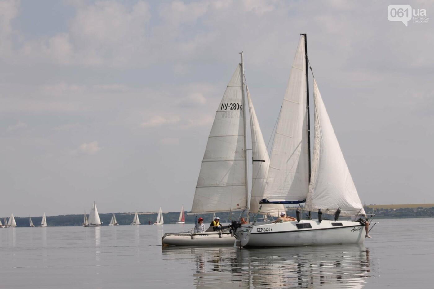 Сотни спортсменов и десятки яхт: как в Запорожье проходит парусная регата, – ФОТОРЕПОРТАЖ, фото-33