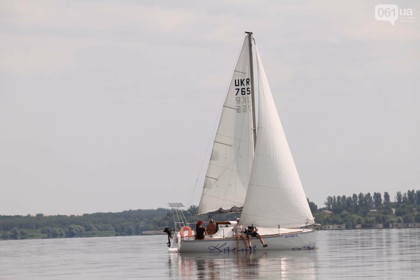 Сотни спортсменов и десятки яхт: как в Запорожье проходит парусная регата, – ФОТОРЕПОРТАЖ, фото-31