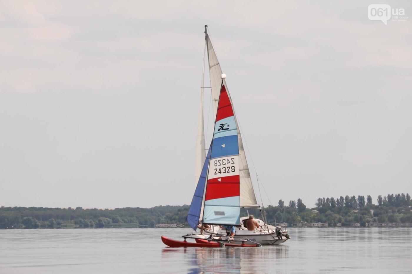 Сотни спортсменов и десятки яхт: как в Запорожье проходит парусная регата, – ФОТОРЕПОРТАЖ, фото-29