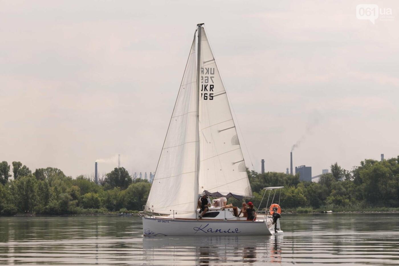Сотни спортсменов и десятки яхт: как в Запорожье проходит парусная регата, – ФОТОРЕПОРТАЖ, фото-37