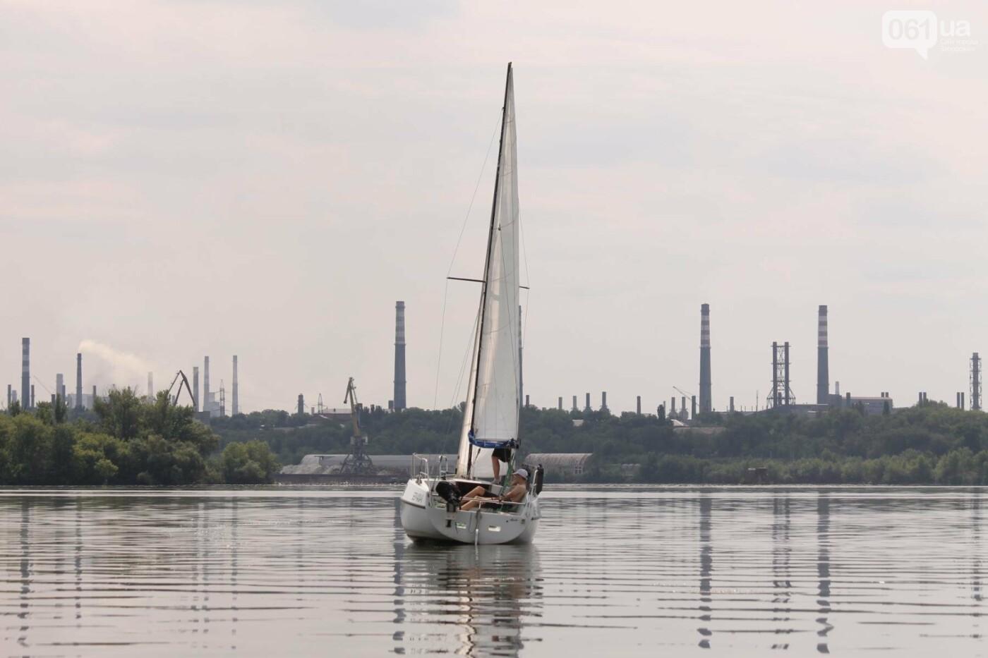 Сотни спортсменов и десятки яхт: как в Запорожье проходит парусная регата, – ФОТОРЕПОРТАЖ, фото-34