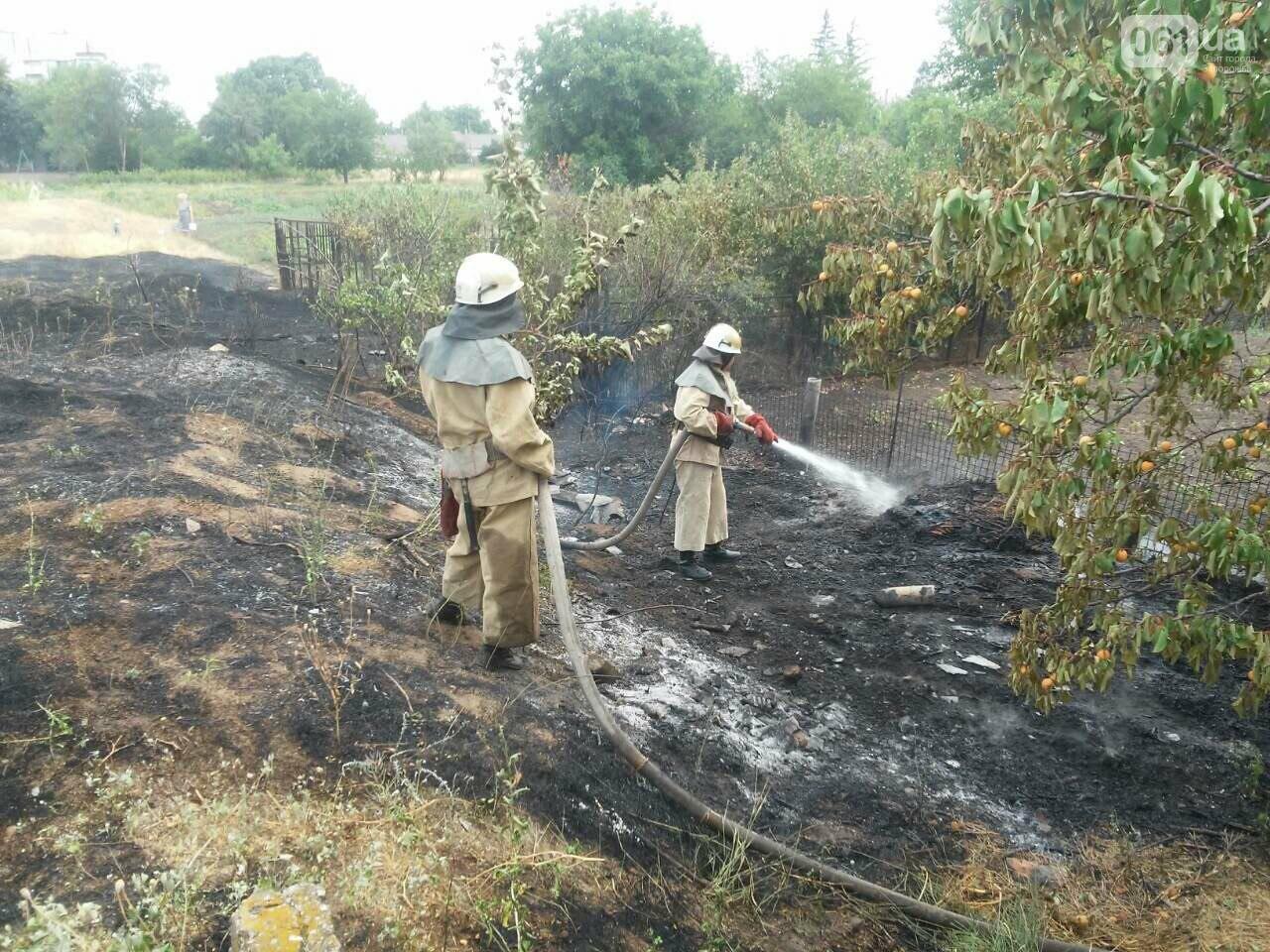 В области за день случилось 23 пожара: в Запорожье тушили не только пожарные, но и ЭЛУАД, - ФОТО, фото-3