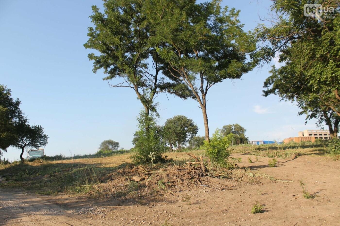 В Запорожье остановилось строительство нового парка на Радуге, – ФОТОРЕПОРТАЖ, фото-11