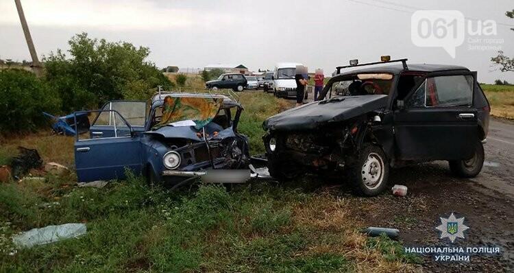 В Запорожской области столкнулись два авто: один человек погиб, виновник ДТП находится под конвоем, фото-1