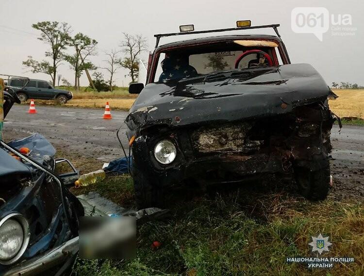 В Запорожской области столкнулись два авто: один человек погиб, виновник ДТП находится под конвоем, фото-2