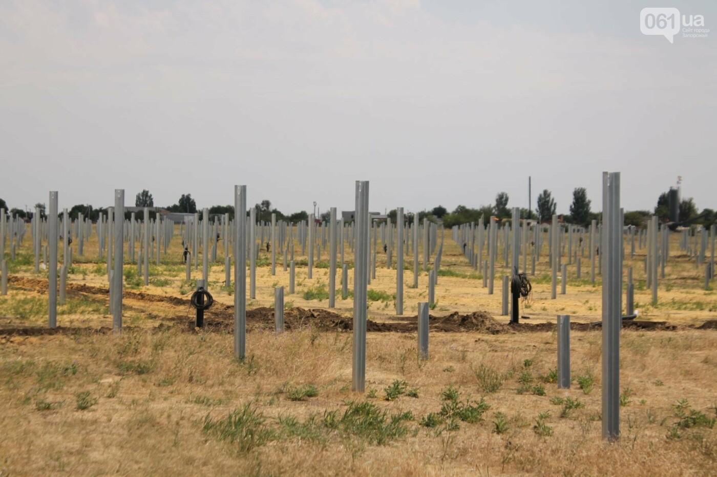 Как в Запорожской области работает крупнейшая в Украине солнечная станция: экскурсия на производство, — ФОТОРЕПОРТАЖ, фото-55