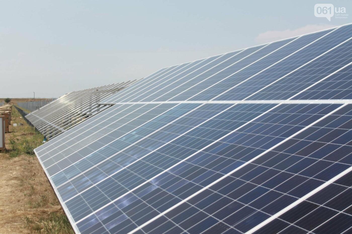 Как в Запорожской области работает крупнейшая в Украине солнечная станция: экскурсия на производство, — ФОТОРЕПОРТАЖ, фото-61