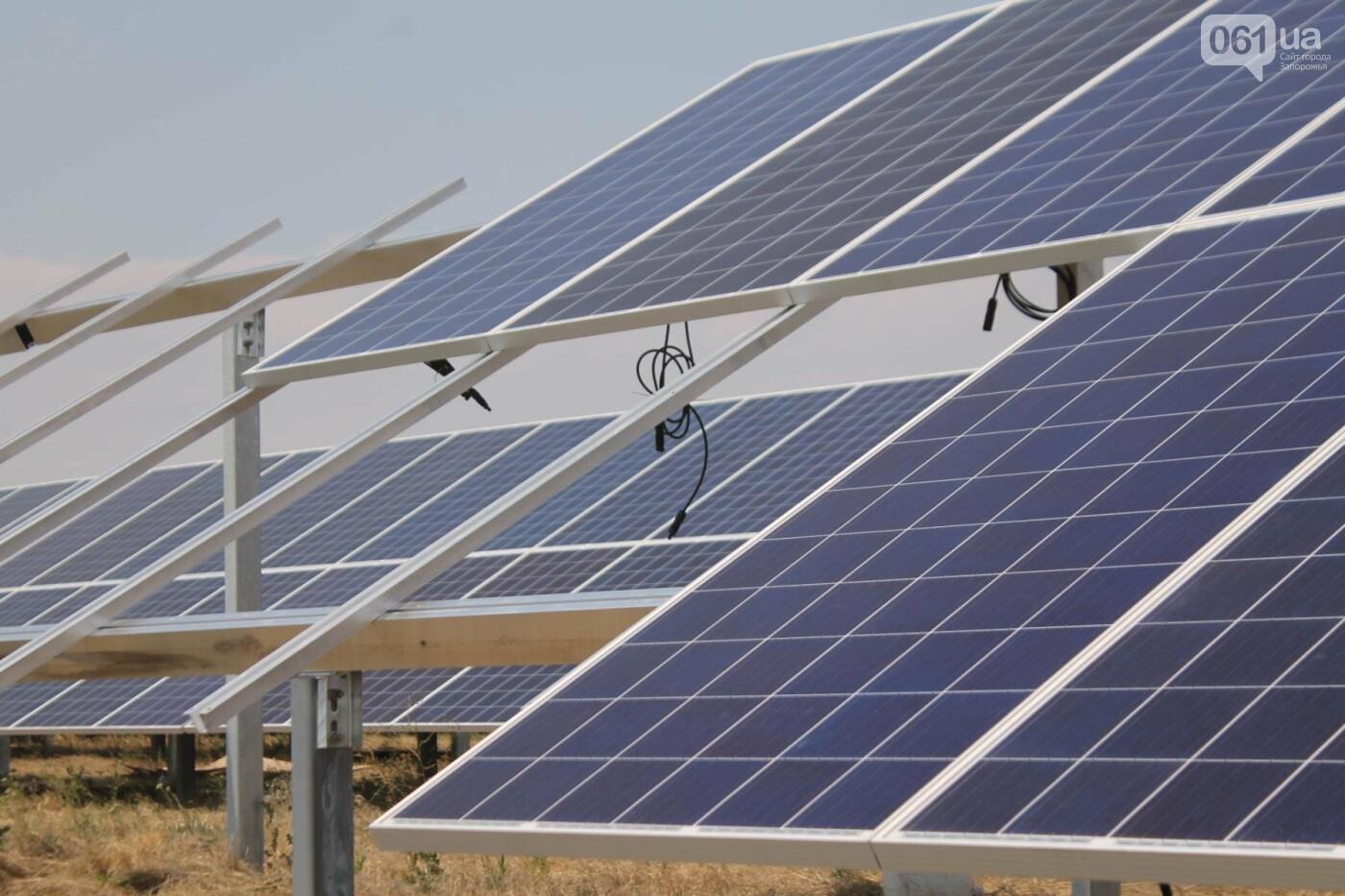Как в Запорожской области работает крупнейшая в Украине солнечная станция: экскурсия на производство, — ФОТОРЕПОРТАЖ, фото-60