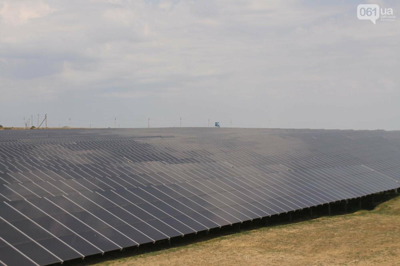 Как в Запорожской области работает крупнейшая в Украине солнечная станция: экскурсия на производство, — ФОТОРЕПОРТАЖ, фото-41