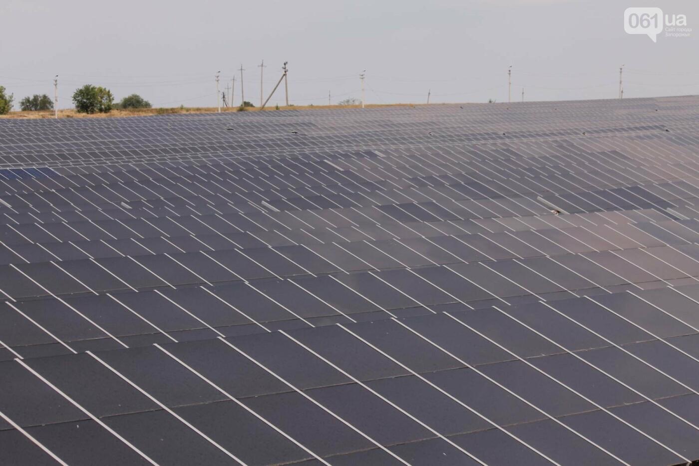 Как в Запорожской области работает крупнейшая в Украине солнечная станция: экскурсия на производство, — ФОТОРЕПОРТАЖ, фото-44