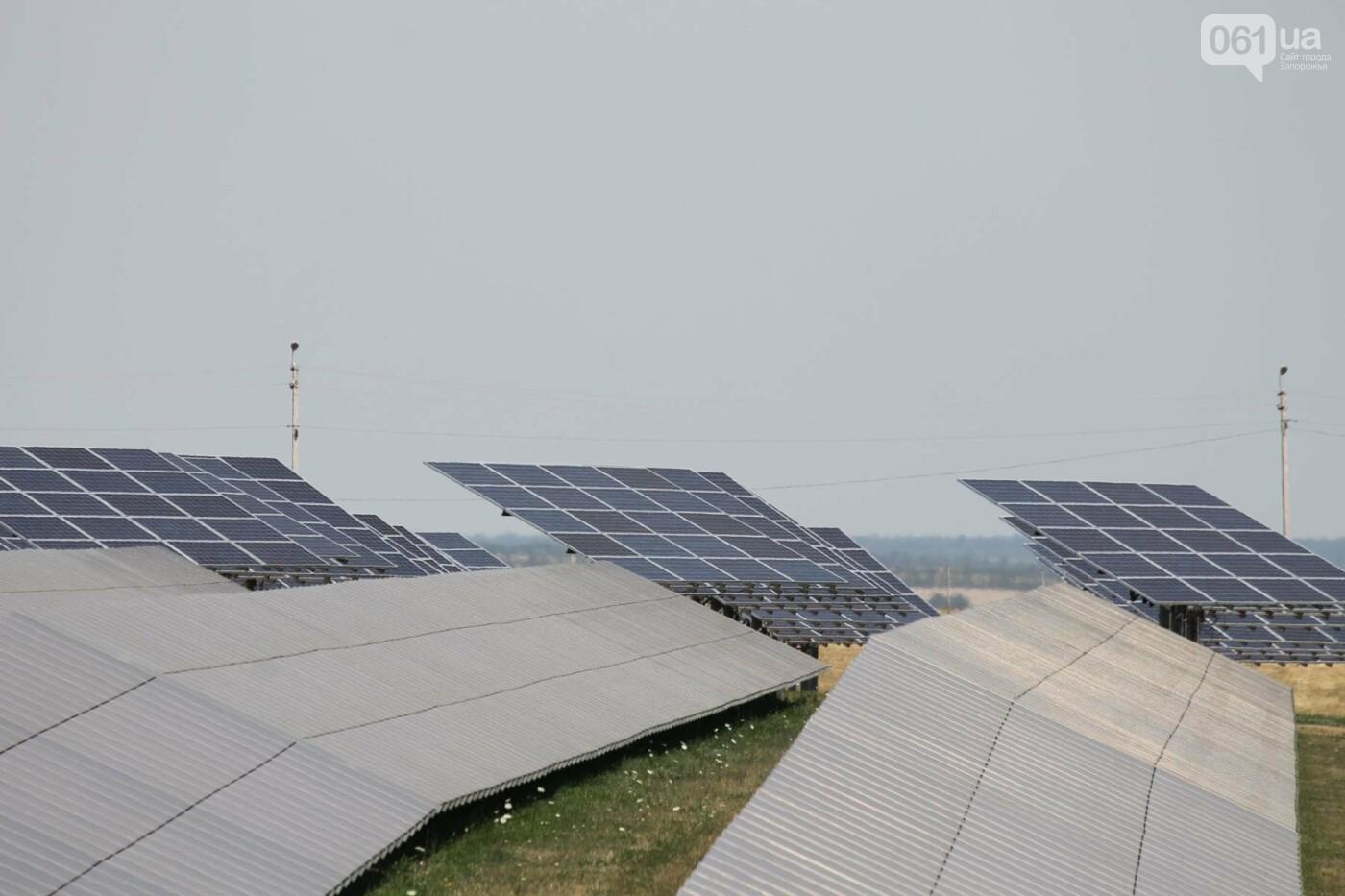 Как в Запорожской области работает крупнейшая в Украине солнечная станция: экскурсия на производство, — ФОТОРЕПОРТАЖ, фото-42