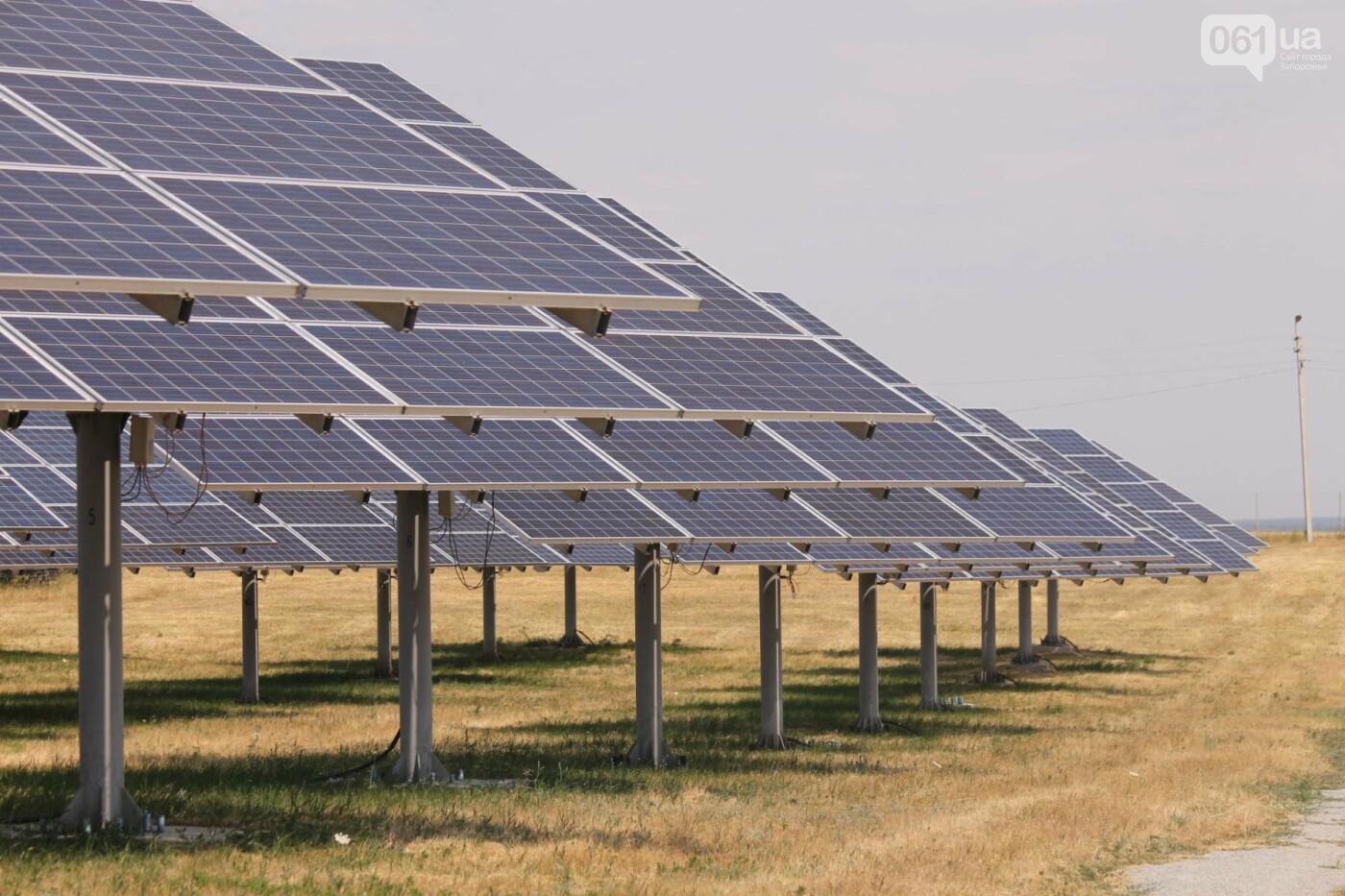 Как в Запорожской области работает крупнейшая в Украине солнечная станция: экскурсия на производство, — ФОТОРЕПОРТАЖ, фото-49