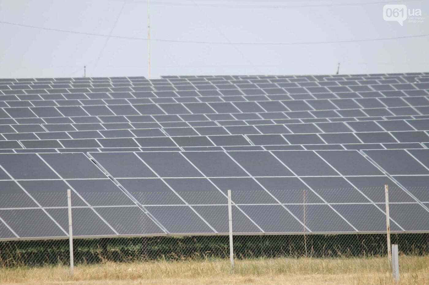 Как в Запорожской области работает крупнейшая в Украине солнечная станция: экскурсия на производство, — ФОТОРЕПОРТАЖ, фото-46