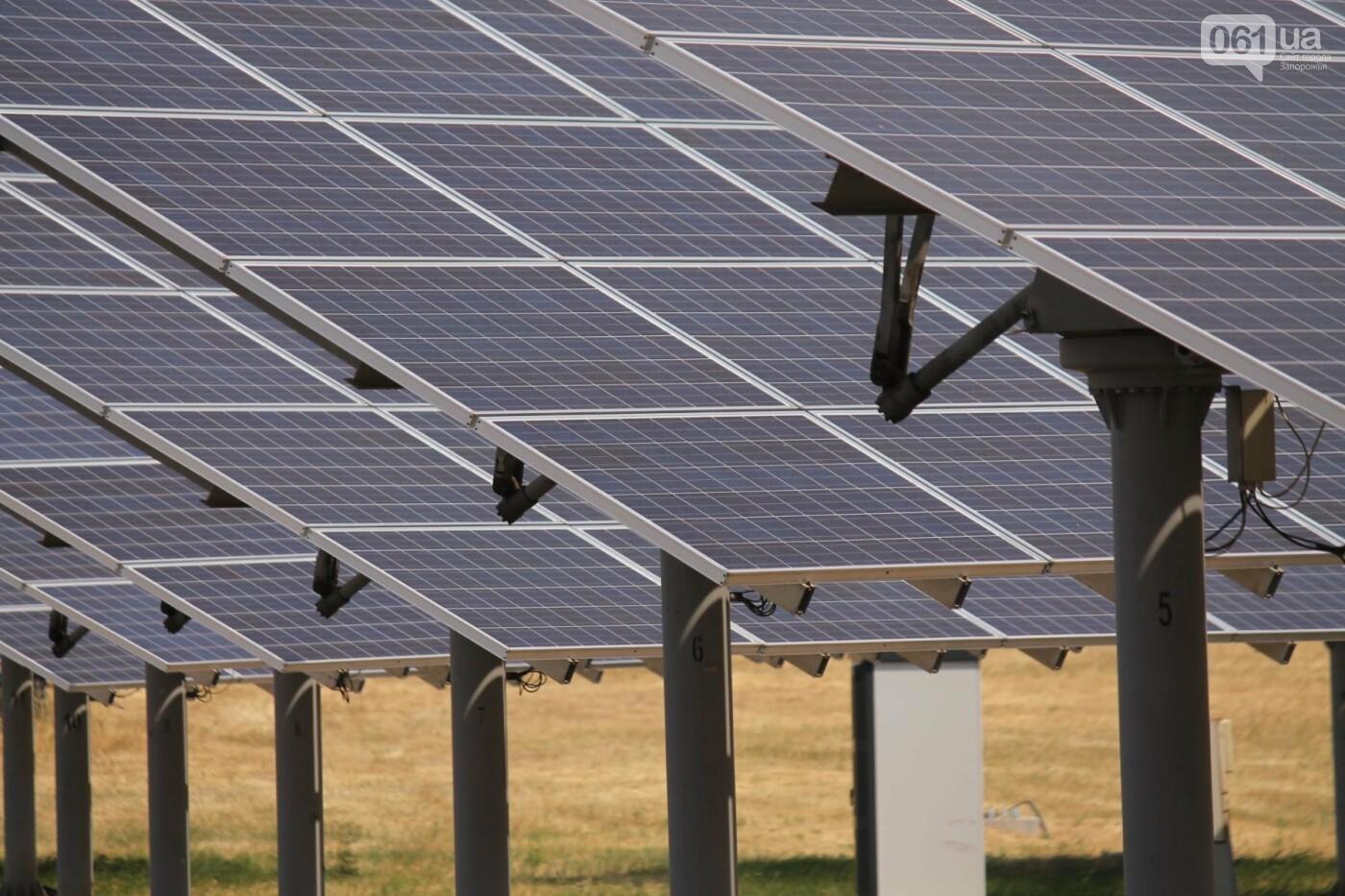 Как в Запорожской области работает крупнейшая в Украине солнечная станция: экскурсия на производство, — ФОТОРЕПОРТАЖ, фото-48
