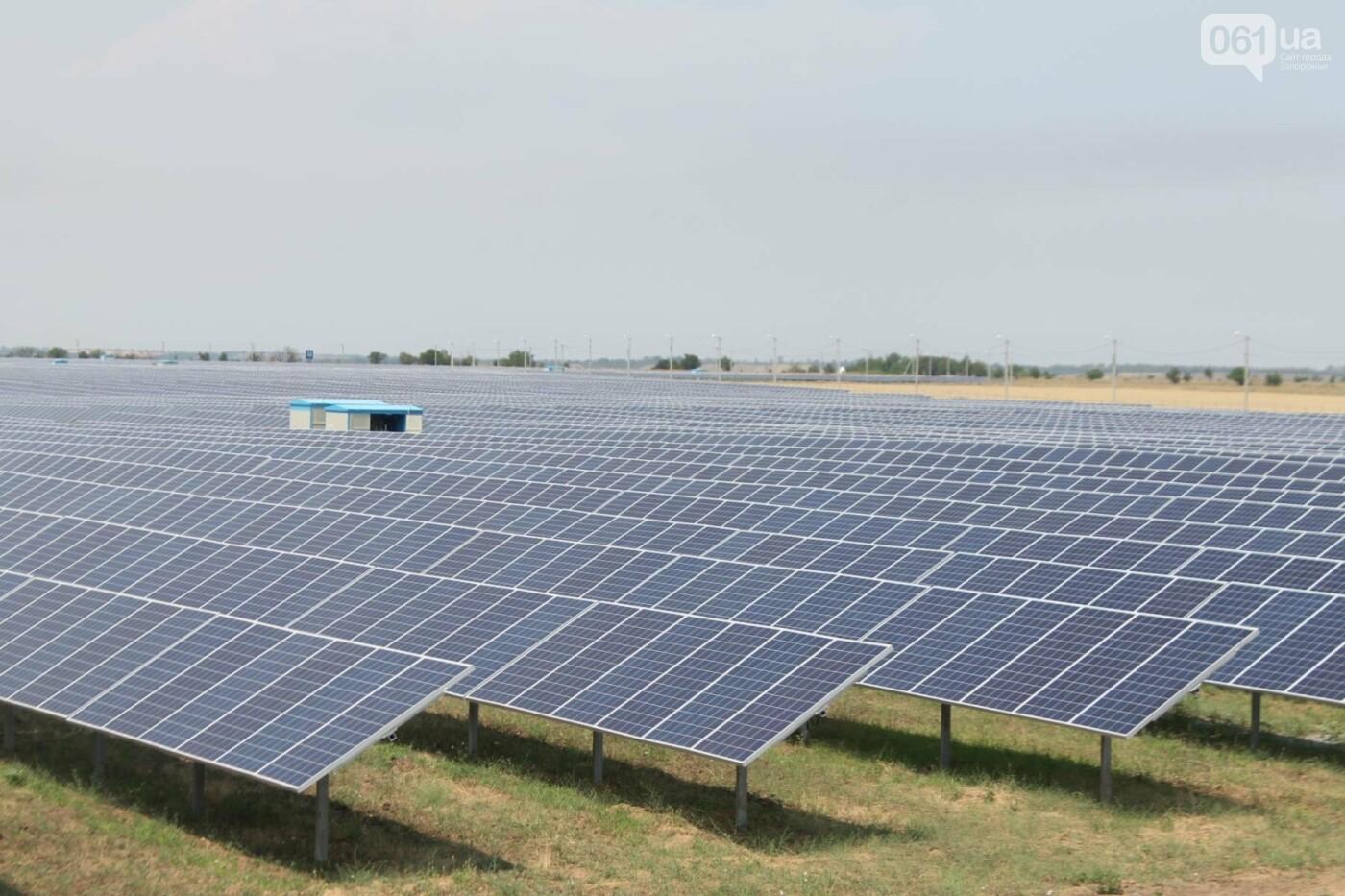 Как в Запорожской области работает крупнейшая в Украине солнечная станция: экскурсия на производство, — ФОТОРЕПОРТАЖ, фото-1