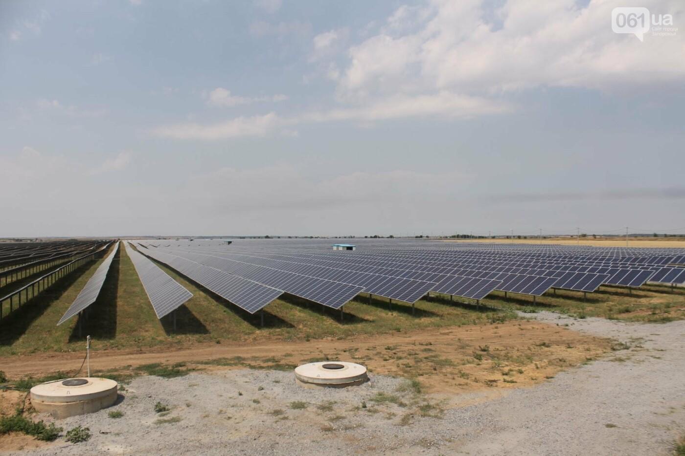 Как в Запорожской области работает крупнейшая в Украине солнечная станция: экскурсия на производство, — ФОТОРЕПОРТАЖ, фото-4