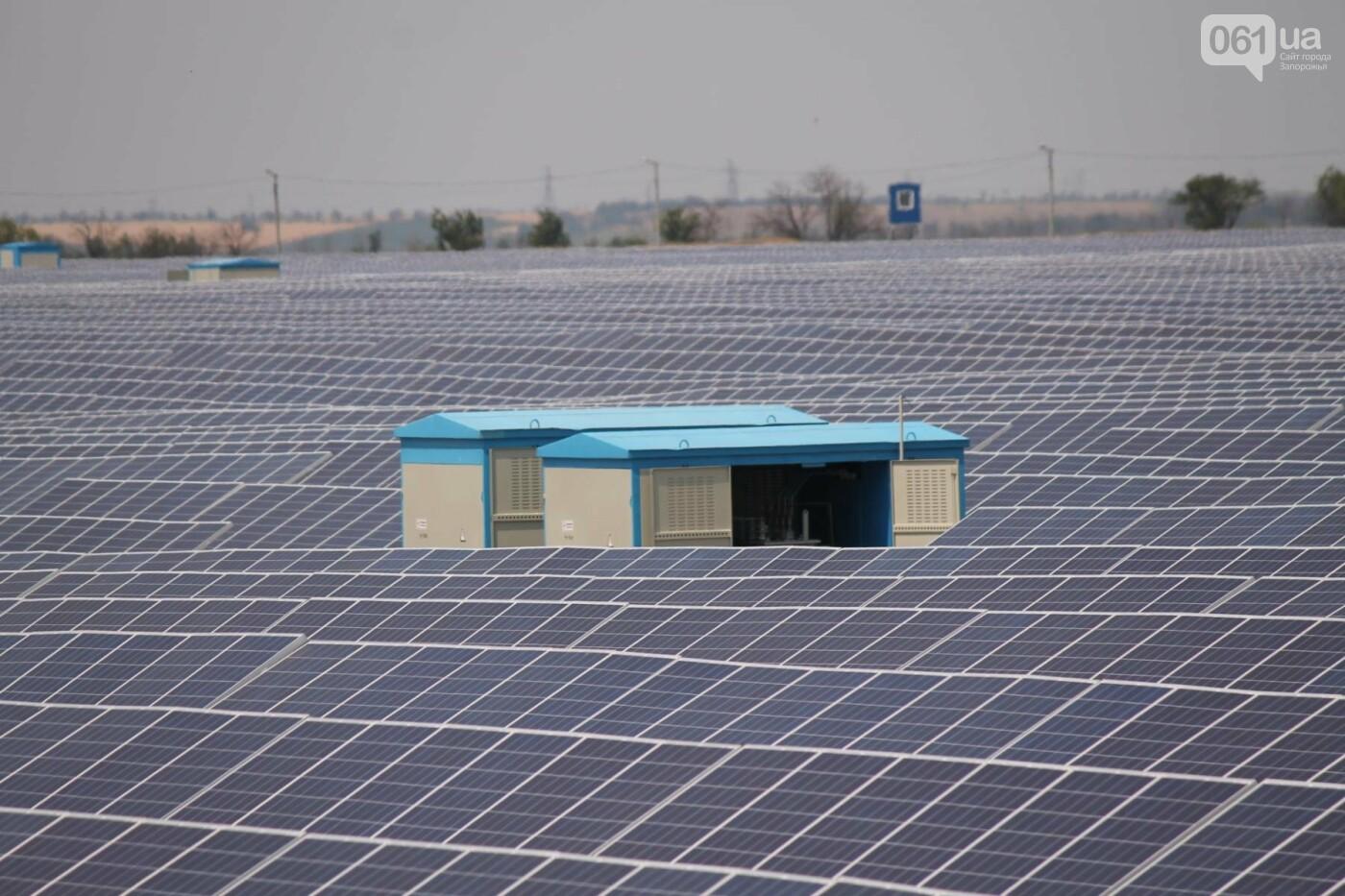 Как в Запорожской области работает крупнейшая в Украине солнечная станция: экскурсия на производство, — ФОТОРЕПОРТАЖ, фото-22