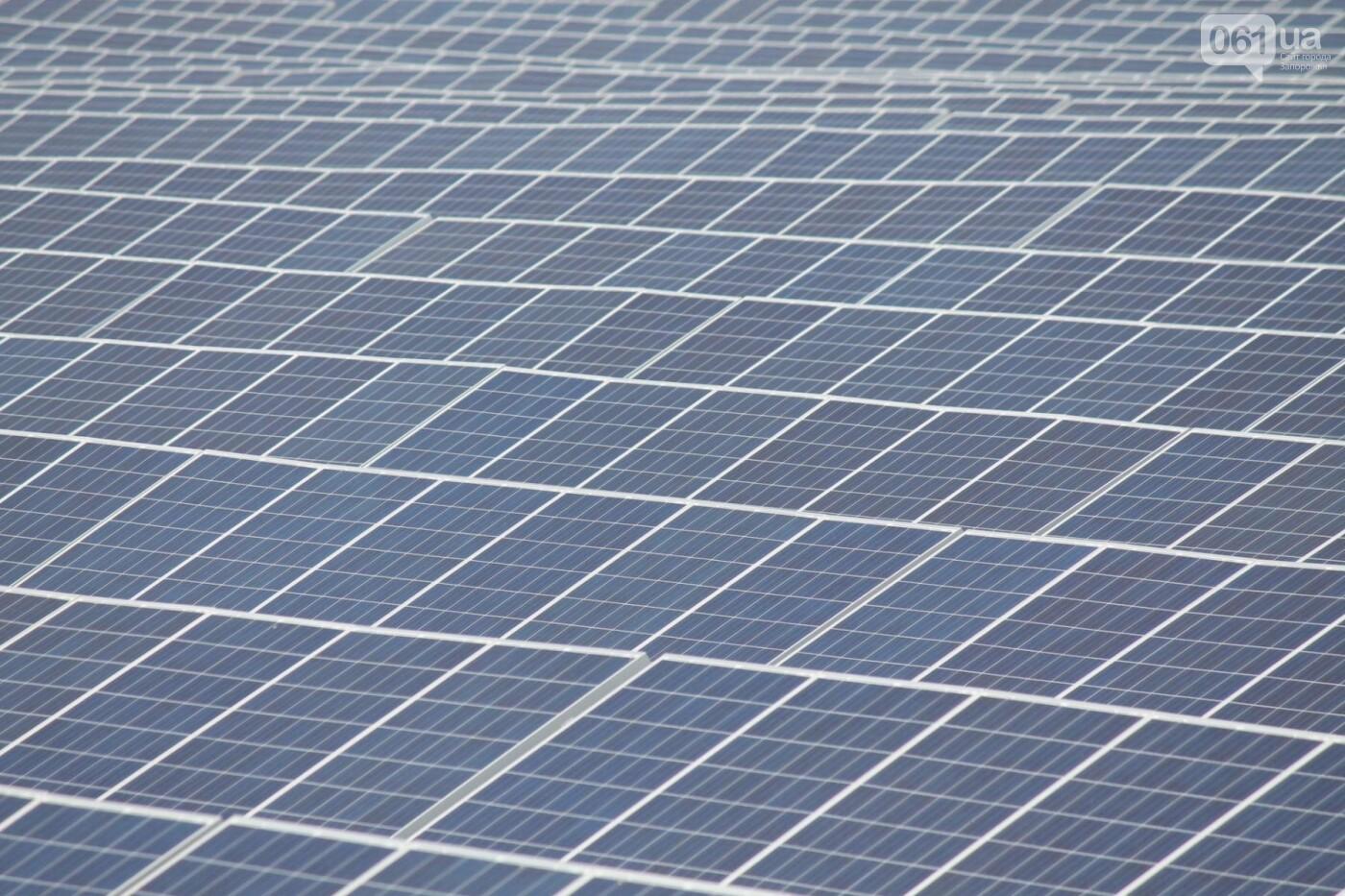 Как в Запорожской области работает крупнейшая в Украине солнечная станция: экскурсия на производство, — ФОТОРЕПОРТАЖ, фото-3