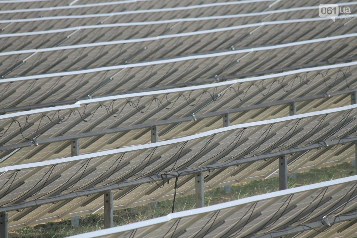 Как в Запорожской области работает крупнейшая в Украине солнечная станция: экскурсия на производство, — ФОТОРЕПОРТАЖ, фото-2