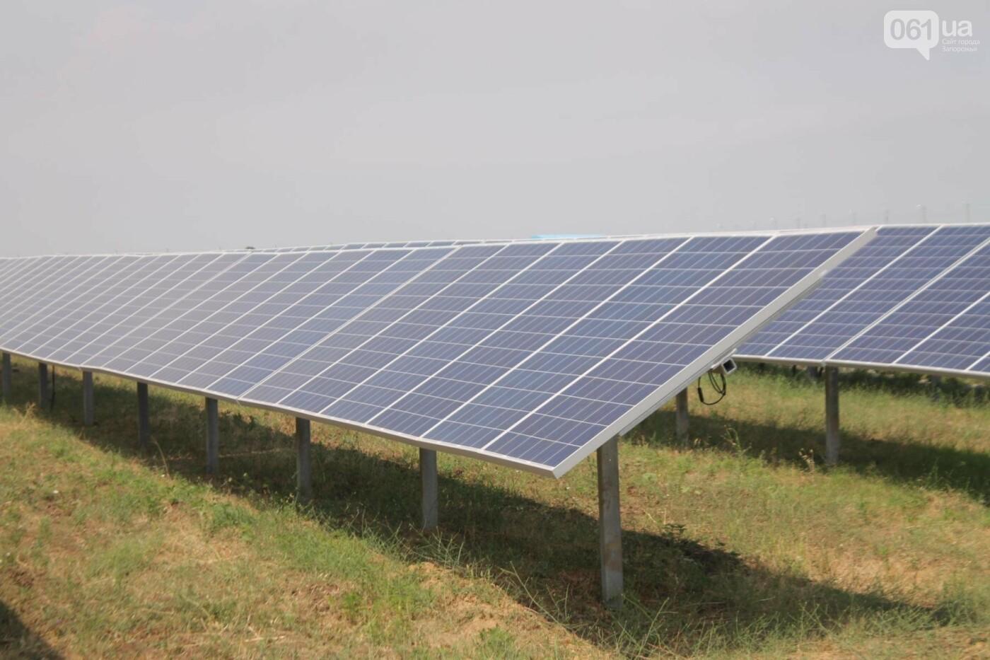 Как в Запорожской области работает крупнейшая в Украине солнечная станция: экскурсия на производство, — ФОТОРЕПОРТАЖ, фото-12