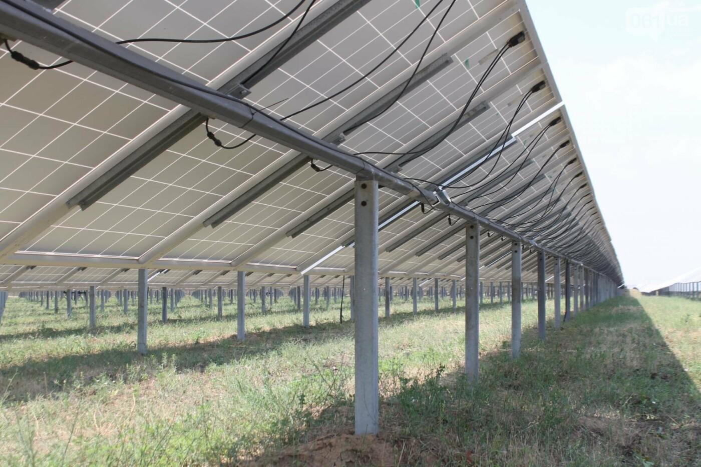 Как в Запорожской области работает крупнейшая в Украине солнечная станция: экскурсия на производство, — ФОТОРЕПОРТАЖ, фото-13