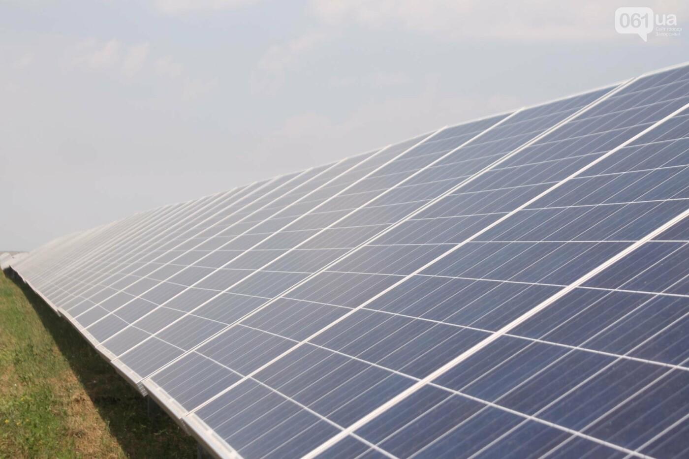 Как в Запорожской области работает крупнейшая в Украине солнечная станция: экскурсия на производство, — ФОТОРЕПОРТАЖ, фото-10