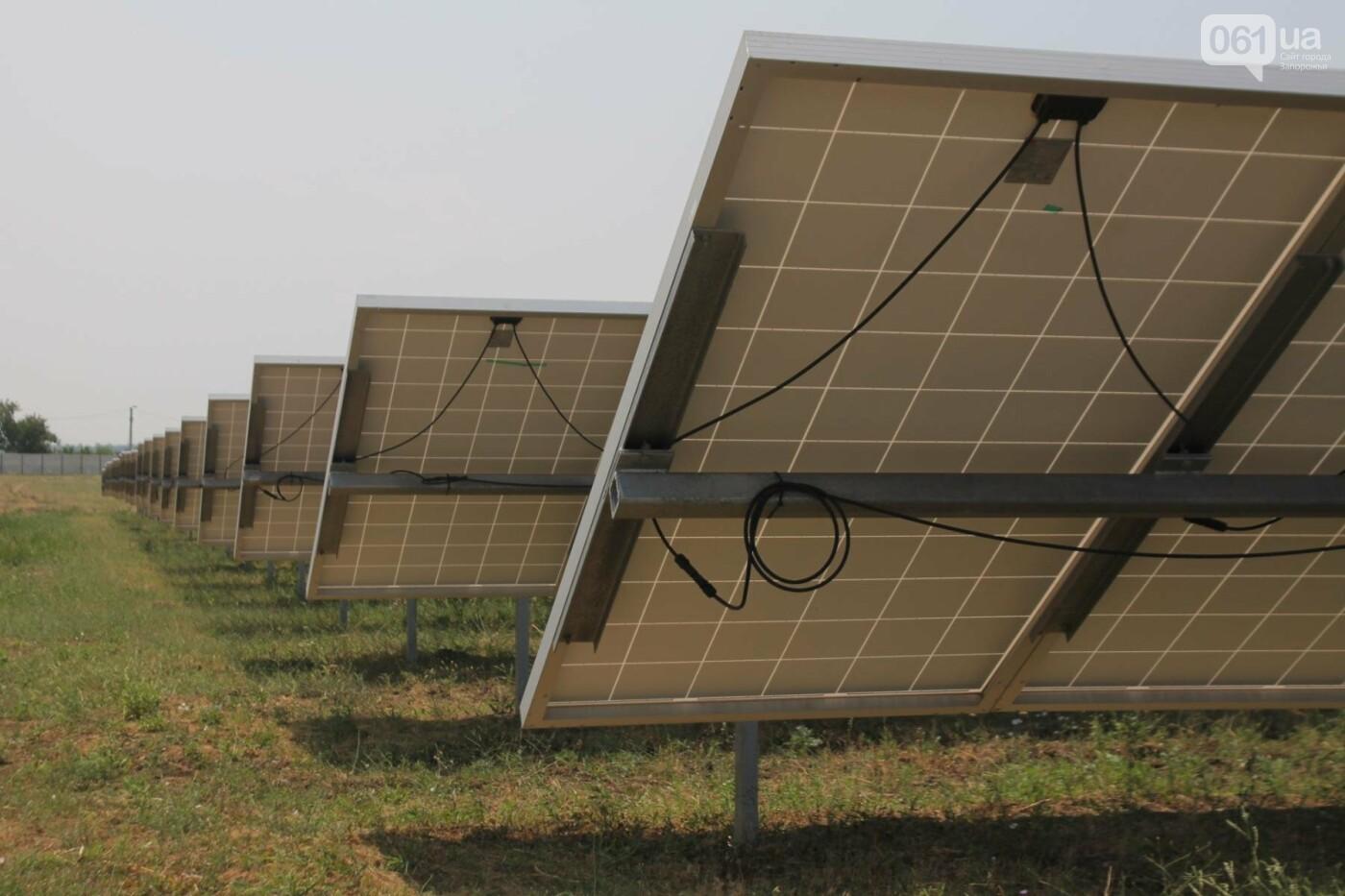 Как в Запорожской области работает крупнейшая в Украине солнечная станция: экскурсия на производство, — ФОТОРЕПОРТАЖ, фото-11