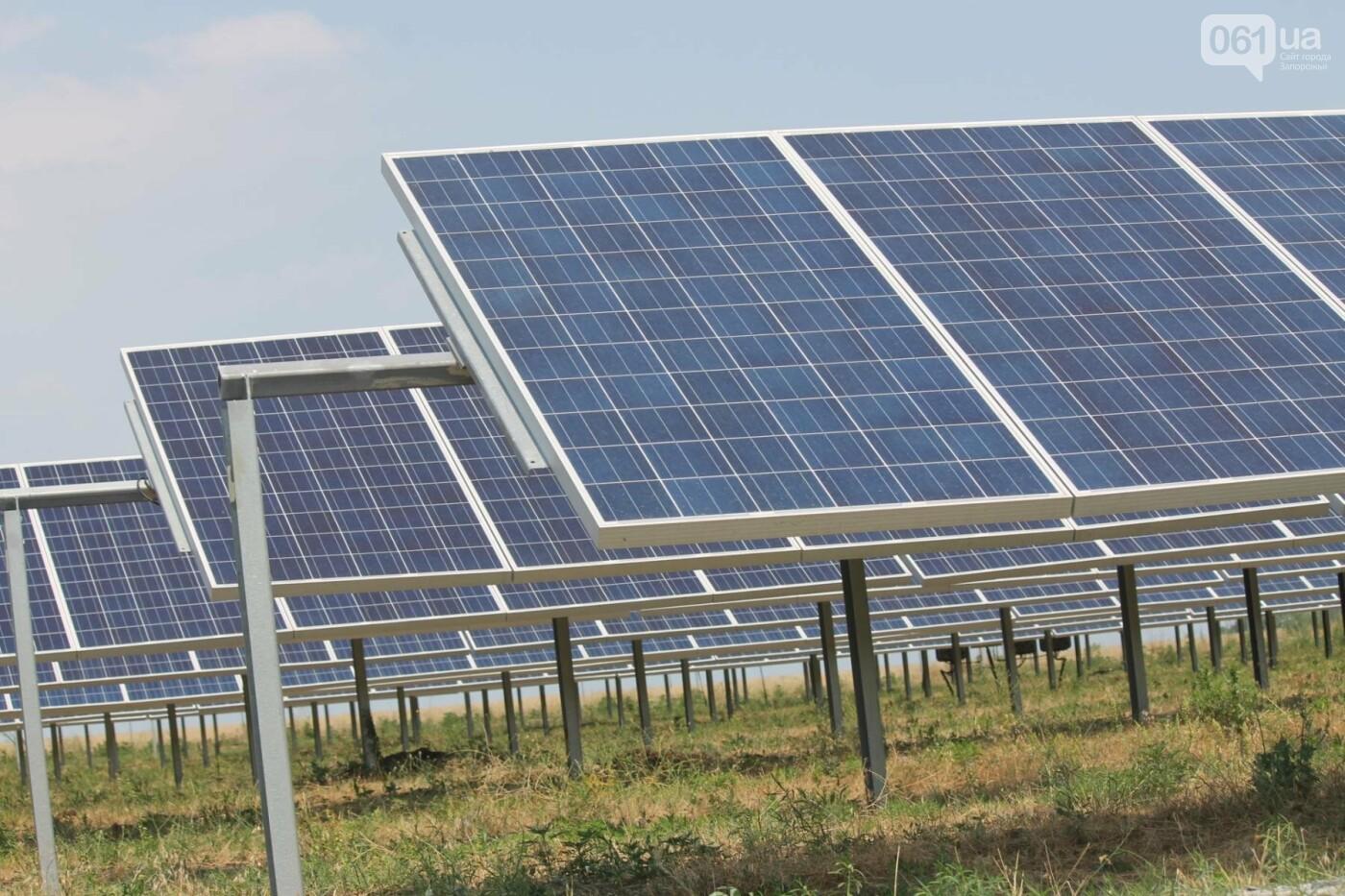 Как в Запорожской области работает крупнейшая в Украине солнечная станция: экскурсия на производство, — ФОТОРЕПОРТАЖ, фото-8