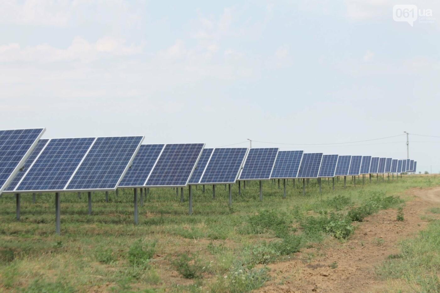 Как в Запорожской области работает крупнейшая в Украине солнечная станция: экскурсия на производство, — ФОТОРЕПОРТАЖ, фото-16