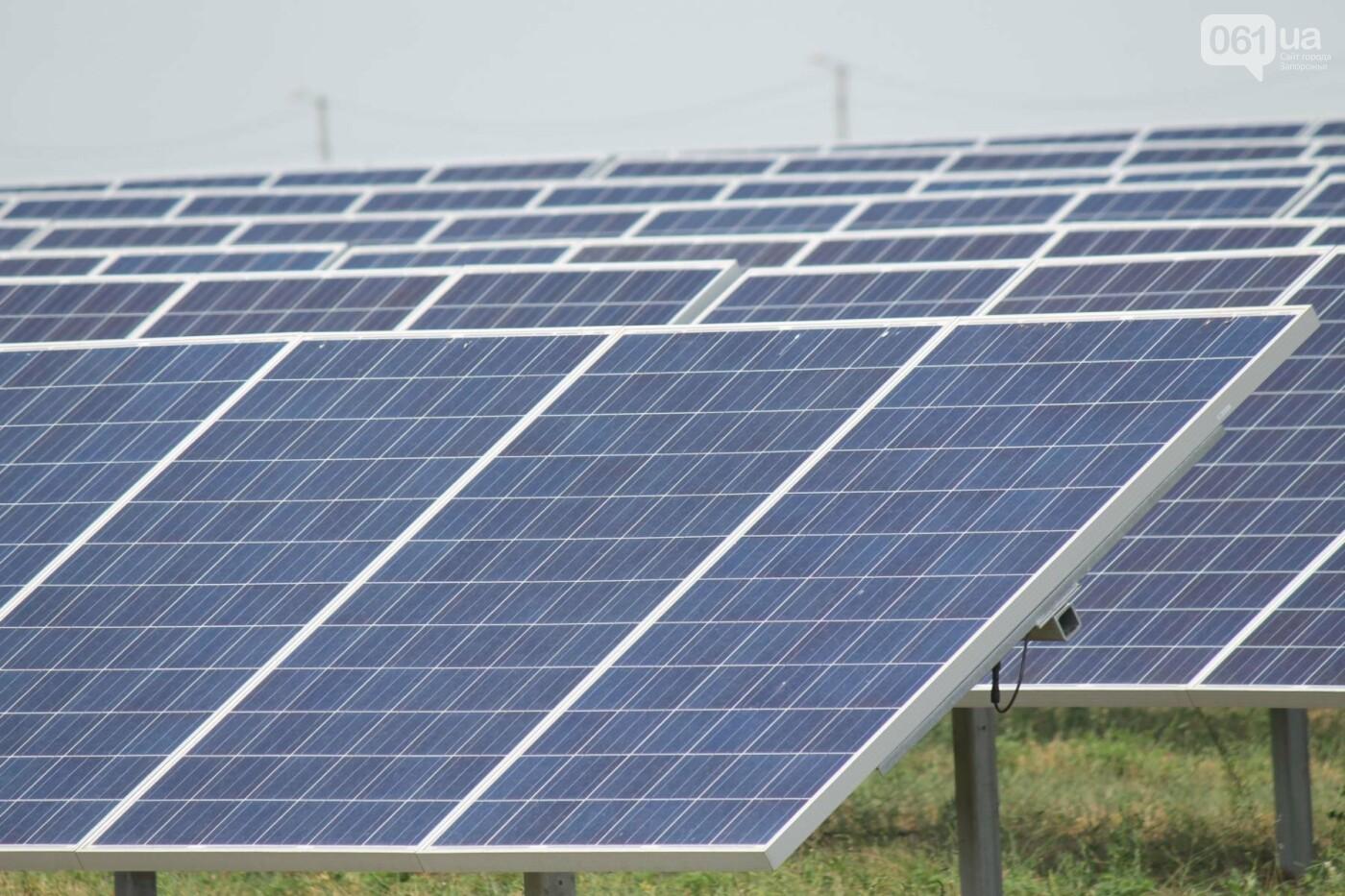 Как в Запорожской области работает крупнейшая в Украине солнечная станция: экскурсия на производство, — ФОТОРЕПОРТАЖ, фото-18