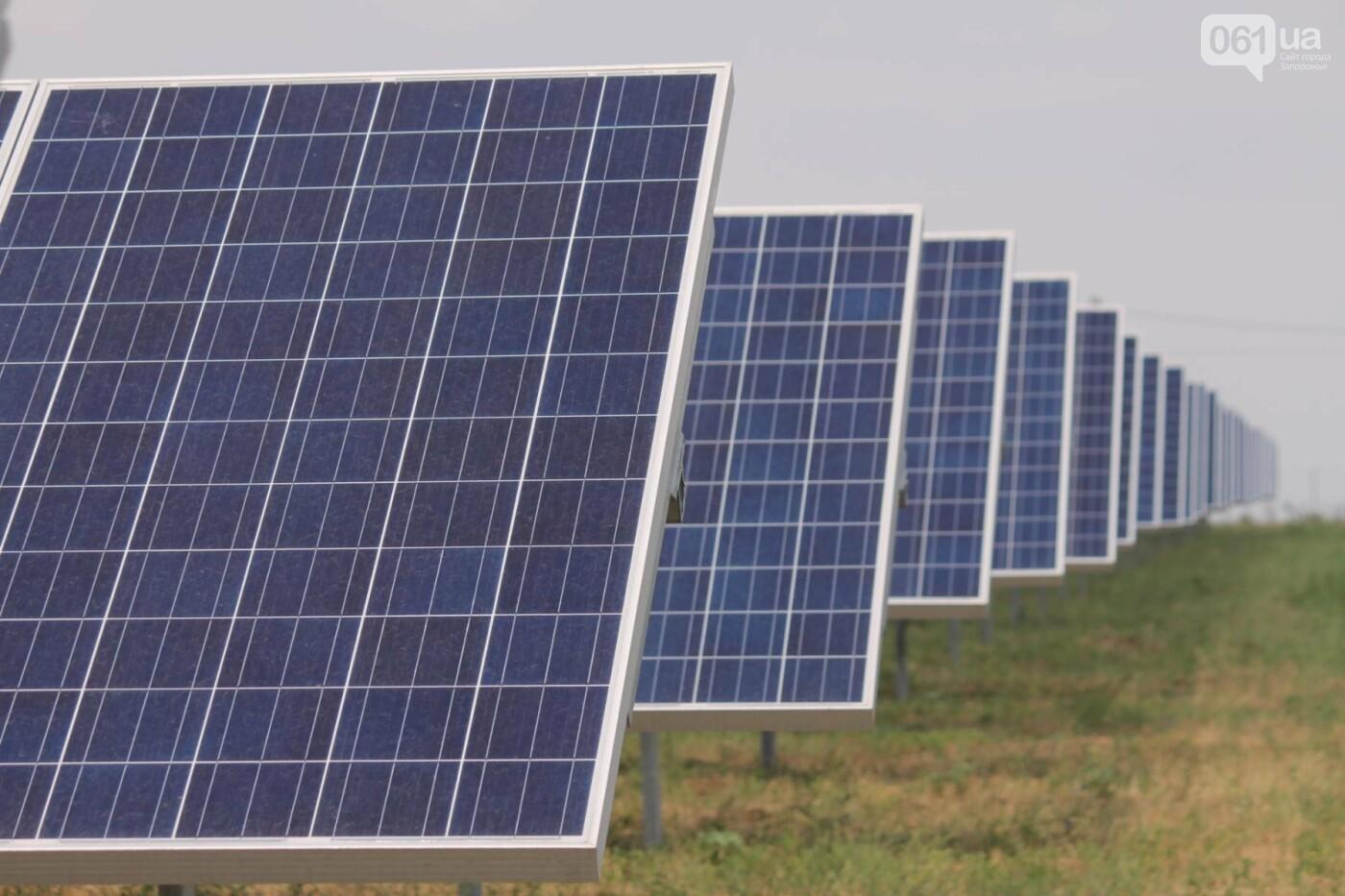 Как в Запорожской области работает крупнейшая в Украине солнечная станция: экскурсия на производство, — ФОТОРЕПОРТАЖ, фото-17