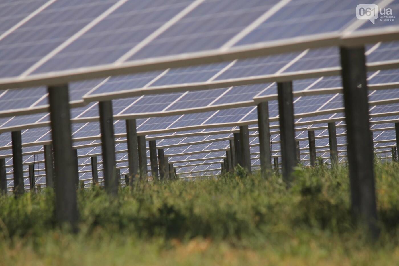 Как в Запорожской области работает крупнейшая в Украине солнечная станция: экскурсия на производство, — ФОТОРЕПОРТАЖ, фото-15