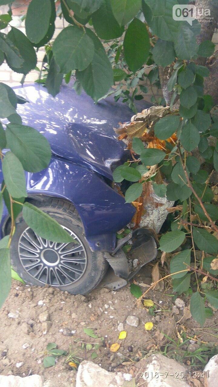 """В Запорожье пьяный водитель на """"Таврии"""" врезался в дерево, - ФОТО, фото-2"""