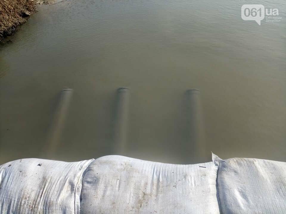 Активисты и сотрудники Нацпарка установили на Молочном лимане самодельную дамбу, - ФОТО, фото-3