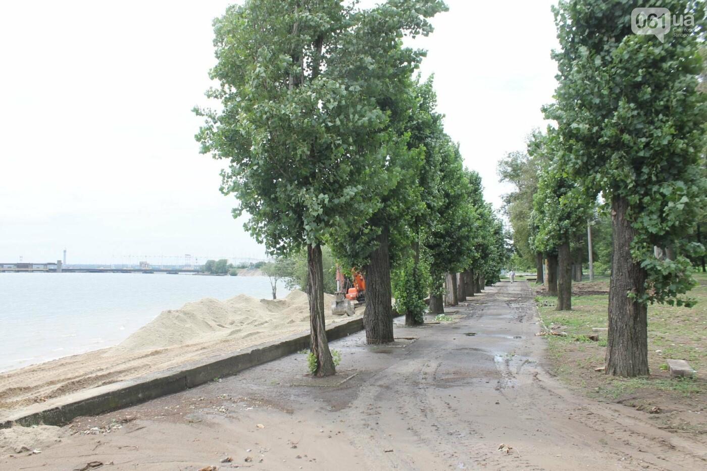В Запорожье началась реконструкция Правобережного пляжа, – ФОТОРЕПОРТАЖ, фото-5