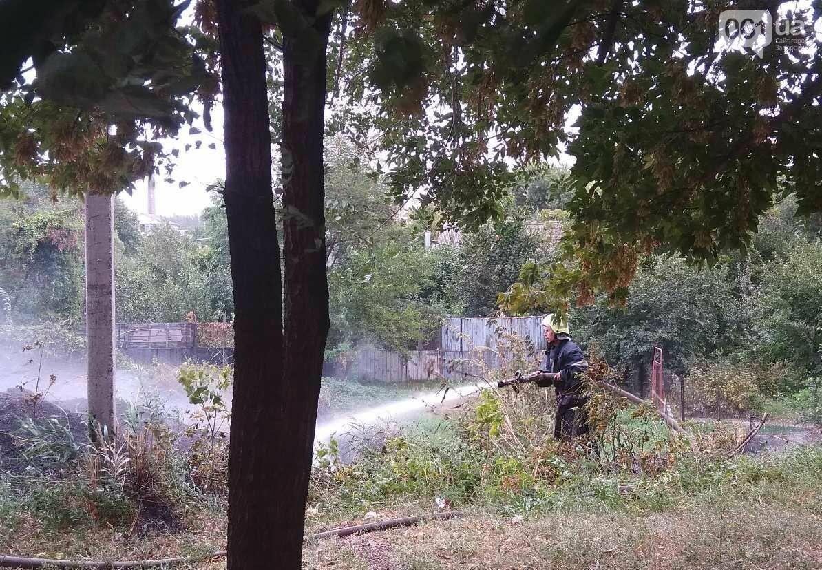 В Запорожской области за день случилось 14 пожаров на природе, - ФОТО, фото-2